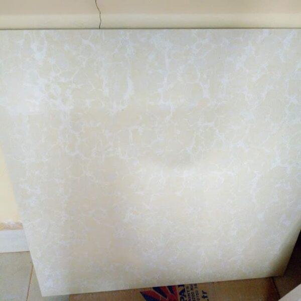 Granito Tiles White And Cream