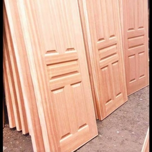 Panel doors mahogany