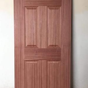 6 Paneled Door